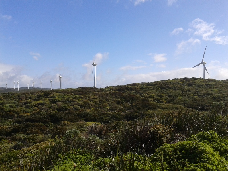 wind_farms_800
