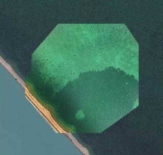 Drone_seagrass