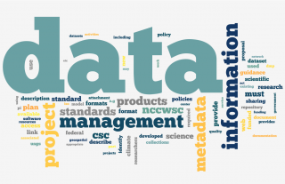 Word Cloud data mngt