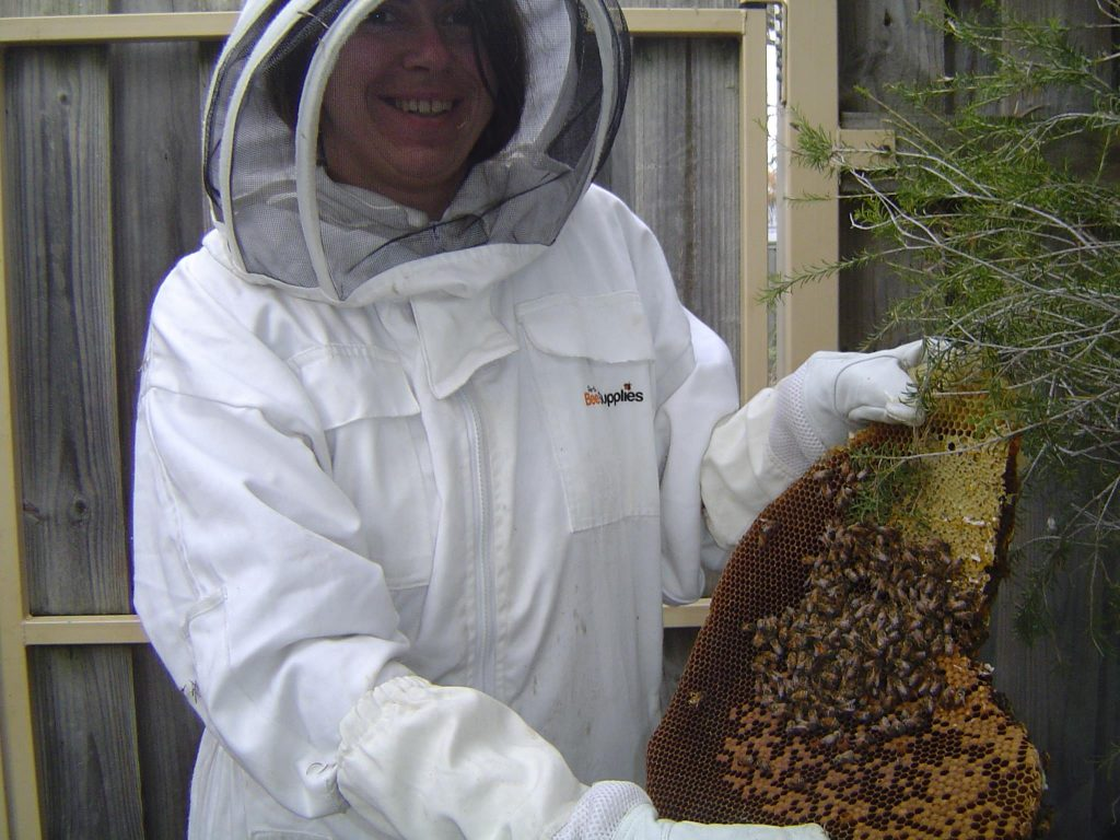 Barb's bee-keeping in the 'burbs