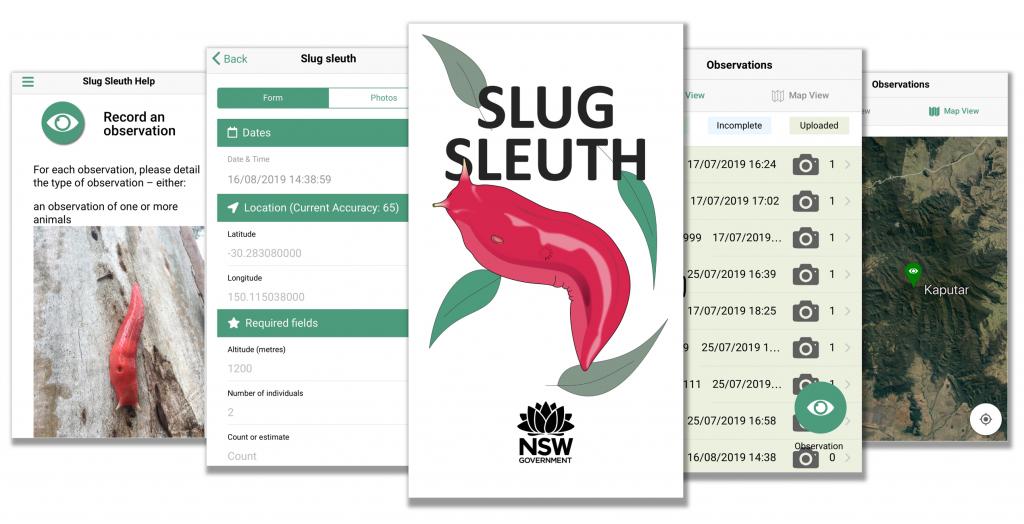Slug Sleuth app