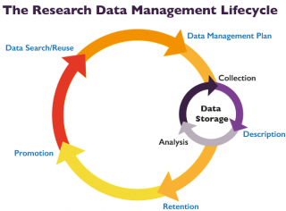 The Research Data Management Life Cycle